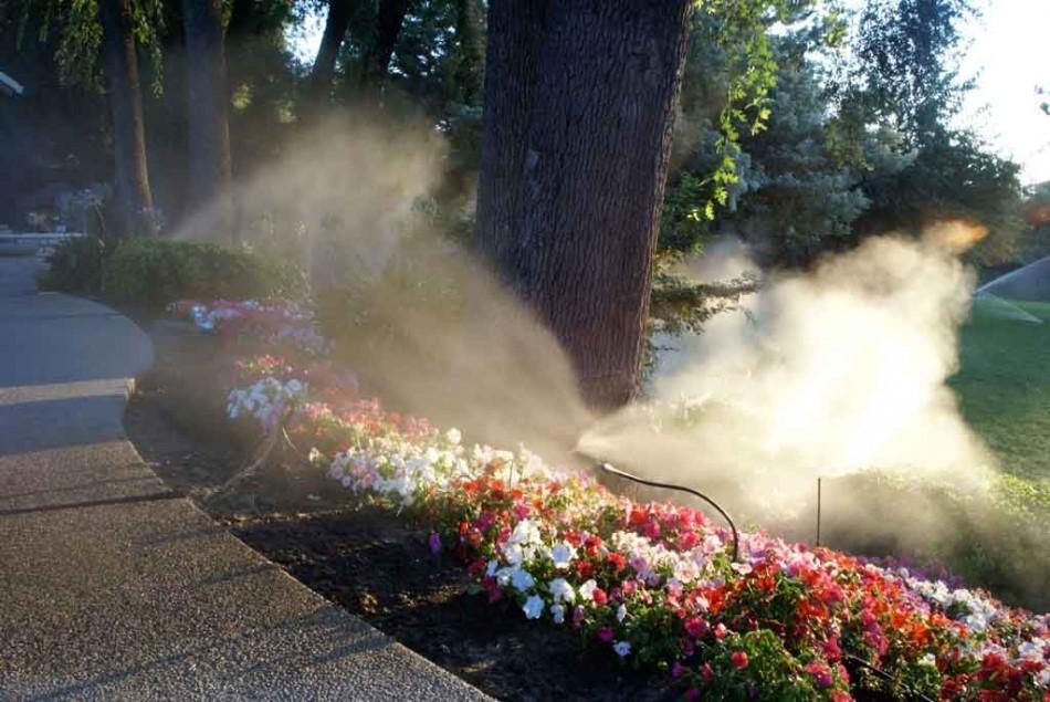 Lắp đặt máy phun sương uy tín-chất lượng  tại quận 11-TP.HCM