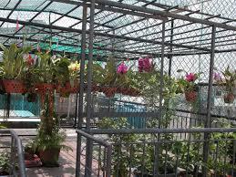 Lắp đặt hệ thống phun sương tưới lan tại quận Tân Phú