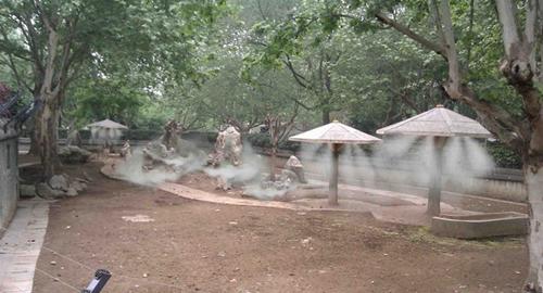 Bán máy phun sương mini giá rẻ toàn quốc