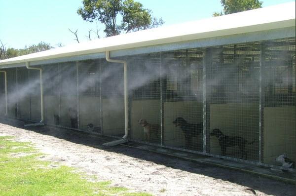 Lắp đặt máy phun sương quận 3