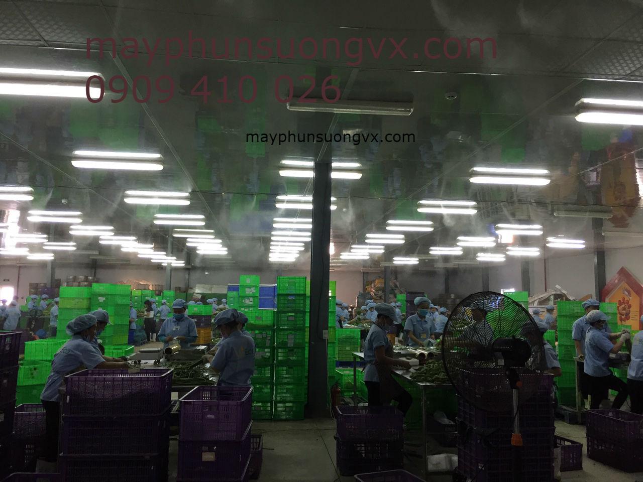 Lắp đặt hệ thống máy phun sương làm mát rau củ quả